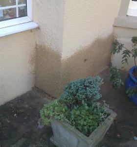 Damp Proof Company Bristol